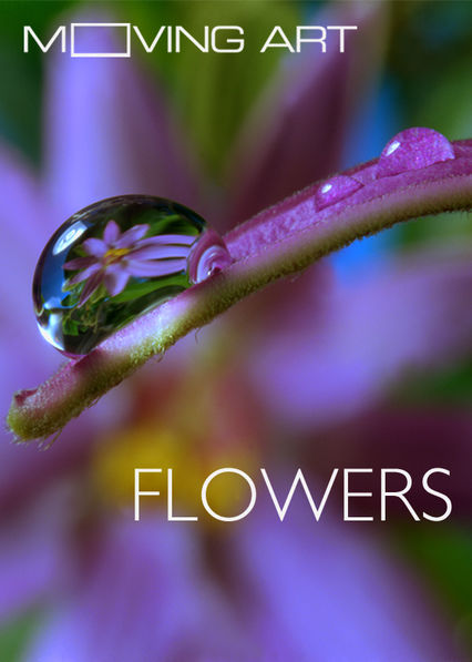 Netflix: Moving Art: Flowers / Moving Art: Kwiaty | Filmmaker Louie Schwartzberg takes viewers on an enchanting journey as elegant flowers come to life through his stunning time-lapse photography. | Oglądaj Film na Netflix.com