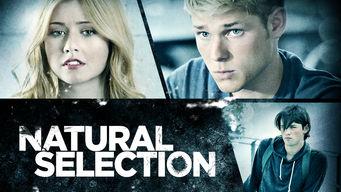netflix-natural-selection