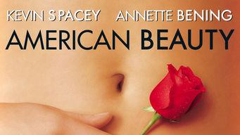 netflix-american-beauty