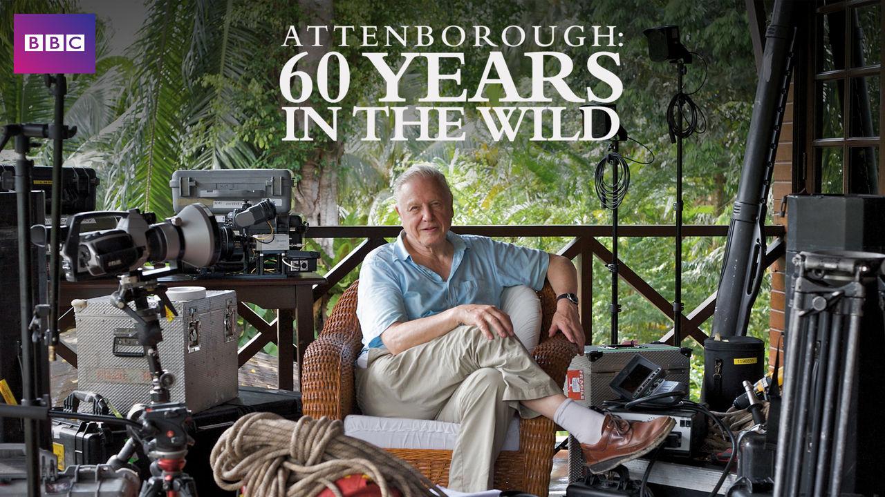 netflix-60-lat-w-dziczy-attenborough