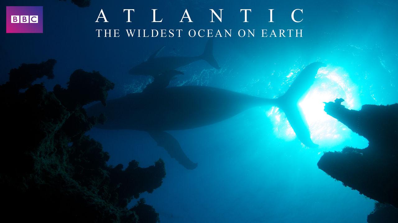 netflix-atlantic