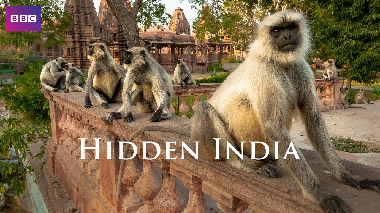netflix-hidden-india