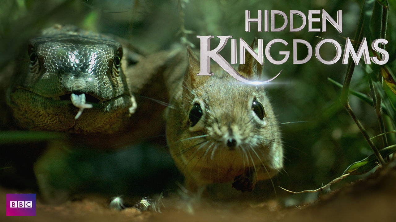 netflix-hidden-kingdoms