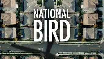 netflix-National-Bird