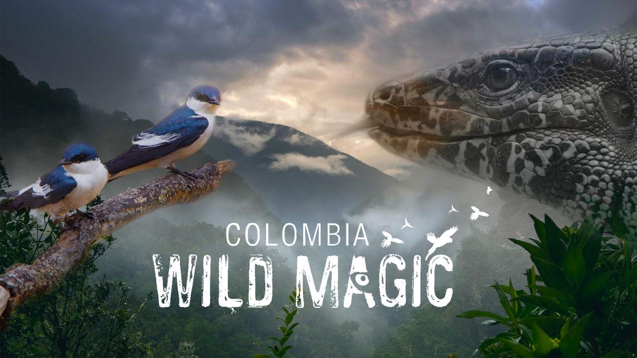 netflix-colombia-wild-magic