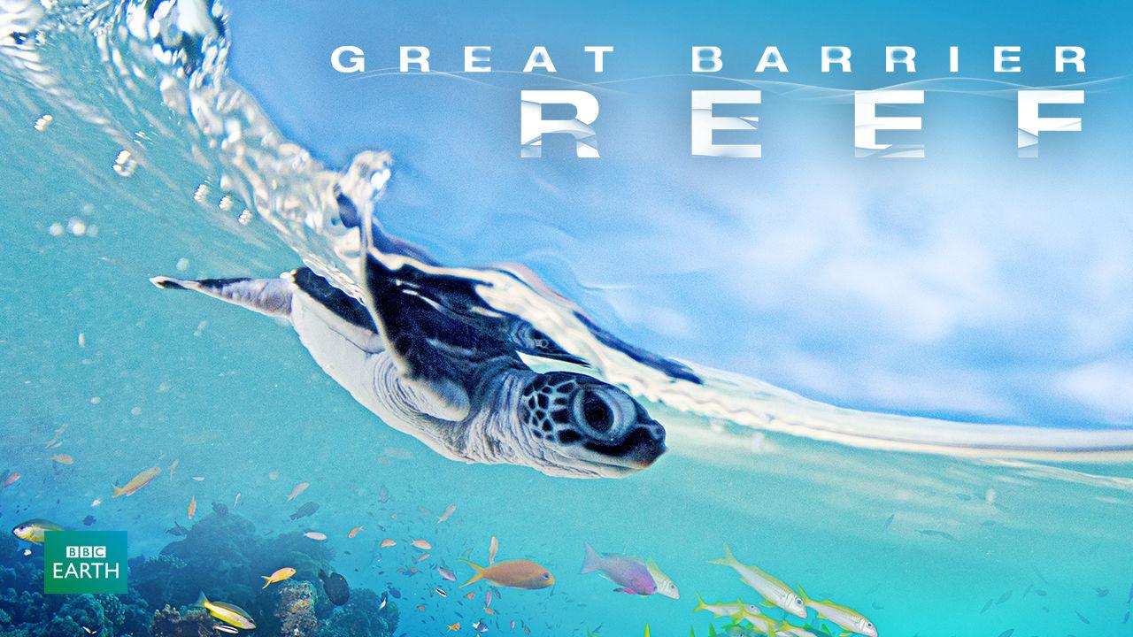 netflix-great-barrier-reef-bg