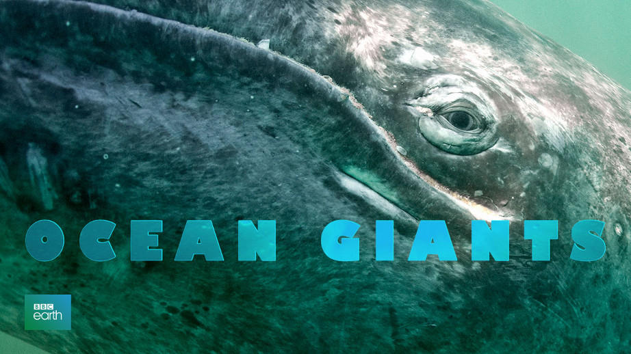 netflix-ocean-giants-1