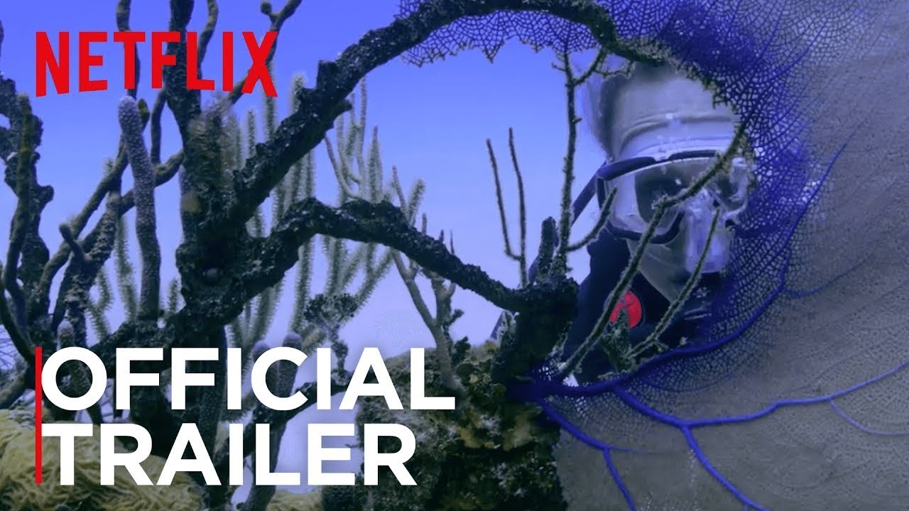 netflix-chasing-coral-trailer