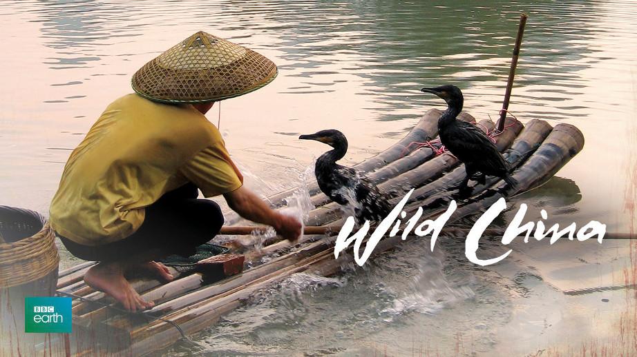 netflix-wild-china-1