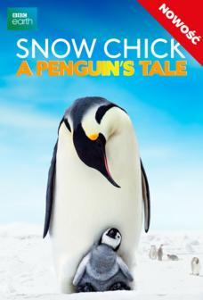 showmax-Snow Chick A Penguins Tale