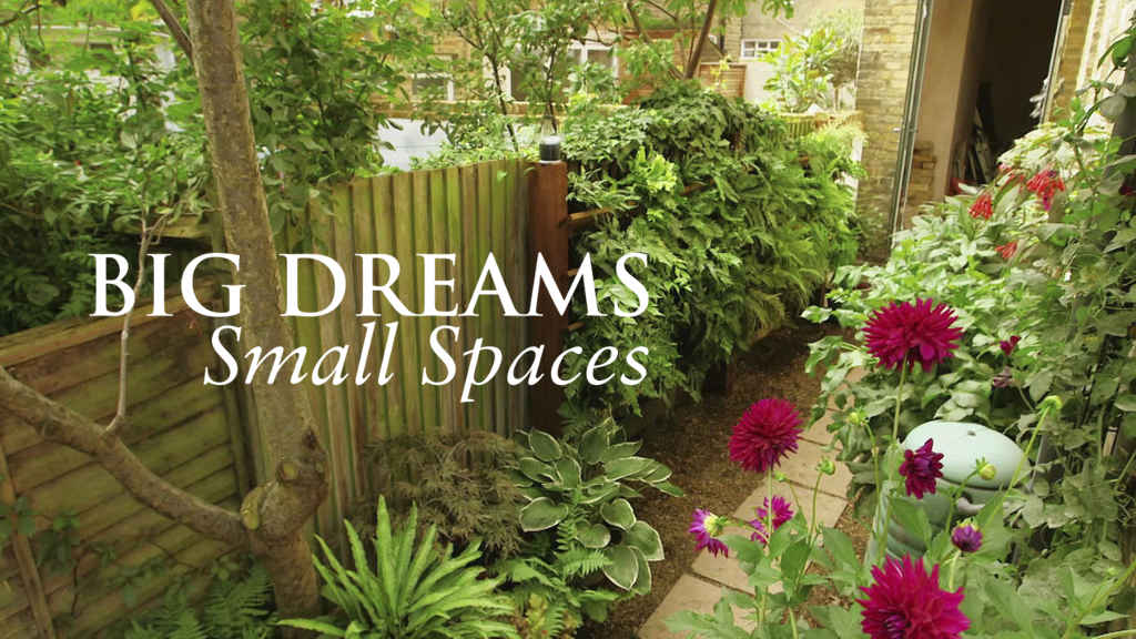 netflix-Big Dreams Small Spaces-bg-1