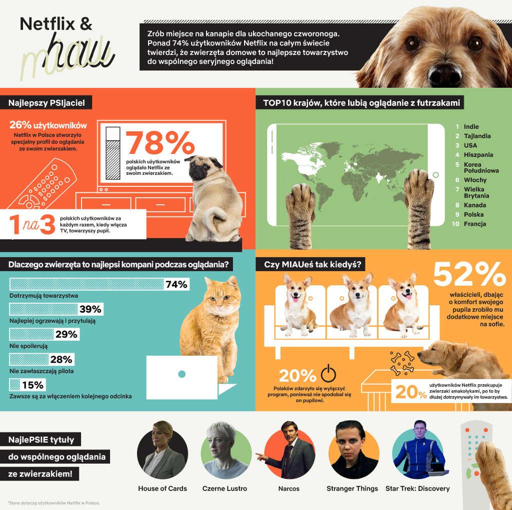 Netflix & hau czy Netflix & miau - infografika-1_1