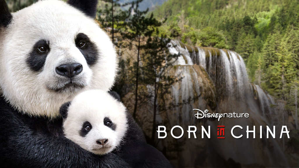 hbo Born in China