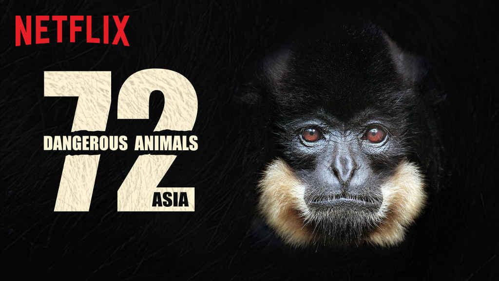 netflix 72 Dangerous Animals Asia s1