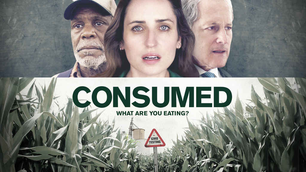 netflix Consumed-