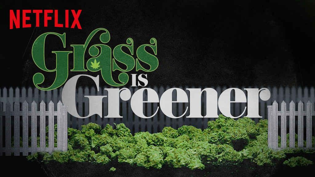 netflix Grass Is Greener