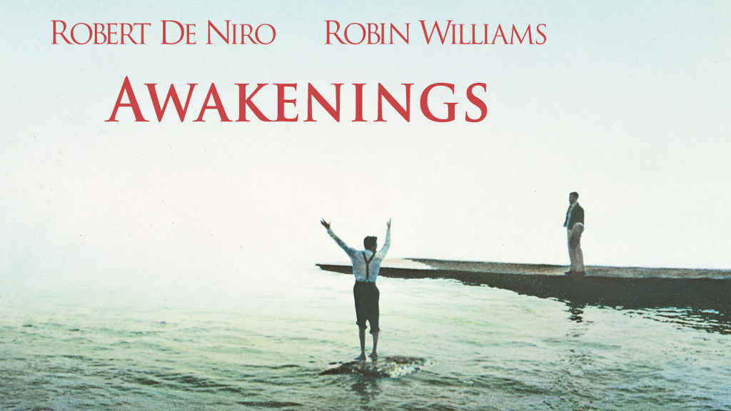 netflix Awakenings