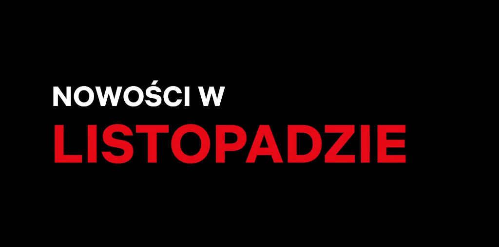 Netflix Polska listopad 2020